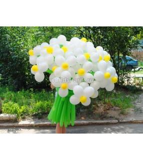 Ромашки из воздушных шариков